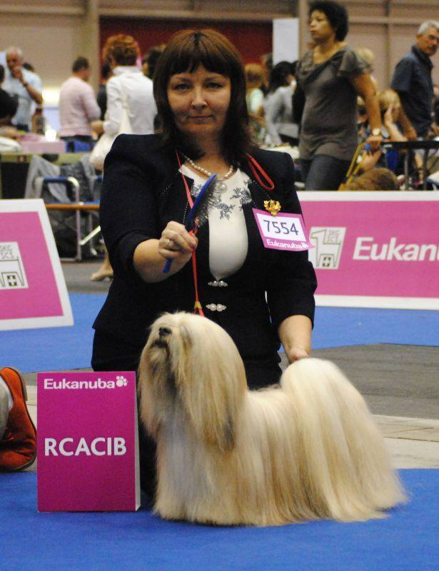Best Dog Shampoo for Lhasa Apso, European Dog Show 2013